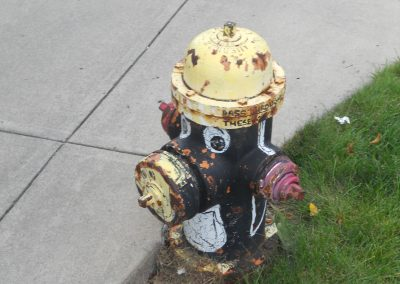 Stambaugh Stadium, Penguin-Painted Fire Hydrant