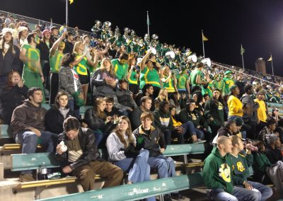 Strawberry Stadium, Southeastern Louisiana Lions Student Section