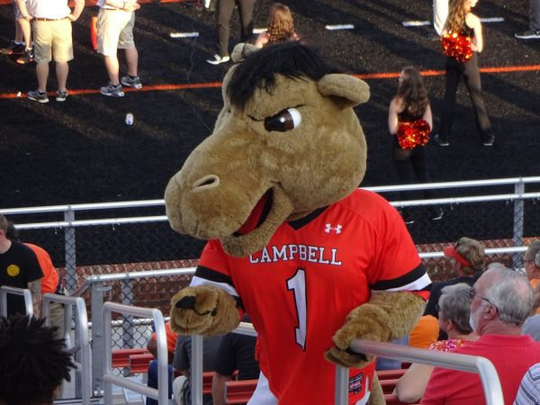 Barker-Lane Stadium, Campbell Camels Mascot Gaylord