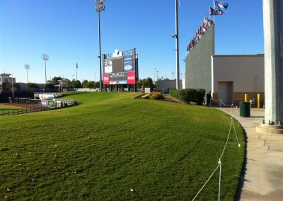 Surprise Stadium Outfield Grass Seating