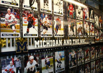 Wolverines in the NHL Display