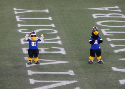 Investors Group Field, Winnipeg Blue Bombers Mascots Buzz & Boomer