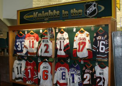 Golden Knights In the NHL Display