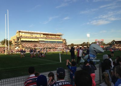 Southern Cross Hill Stadium - Game Action and Mascot