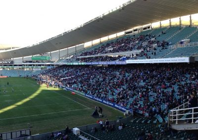 Allianz Stadium, Sydney Roosters Fans Looking On