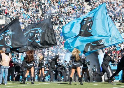 Panther Flags