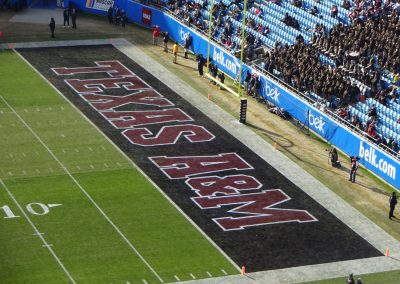 Belk Bowl at Bank of America Stadium, Team Names in End Zones