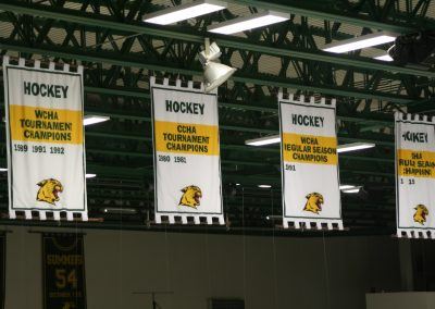 Banners Hang at Berry Center