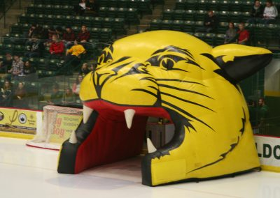 Wildcat Inflatable at Berry Center