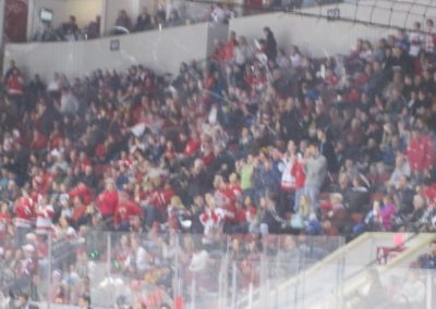 Terrier Fans Celebrate Another Goal