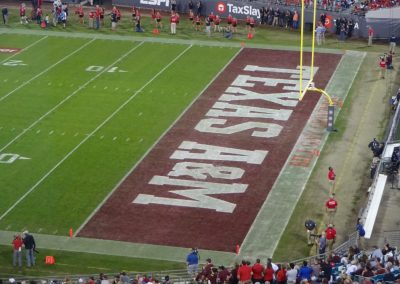 TIAA Bank Field End Zone during the Gator Bowl