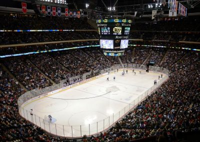 Game Action at Xcel Energy Center