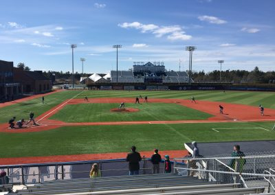 Mahaney Diamond Infield