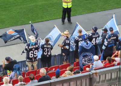 BMO Field, fans cheering on the Toronto Argonauts