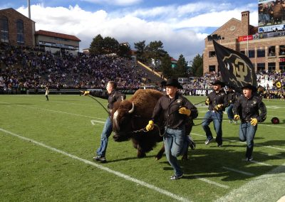 Running with Ralphie at Folsom Field