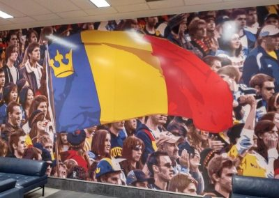 Athletics and Recreation Centre - Queen's Gaels Mural