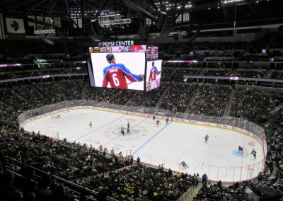 Overview of Rink