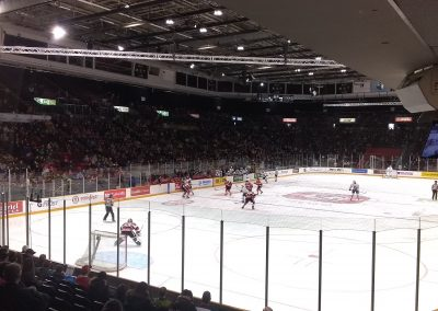 Game Action at TD Place