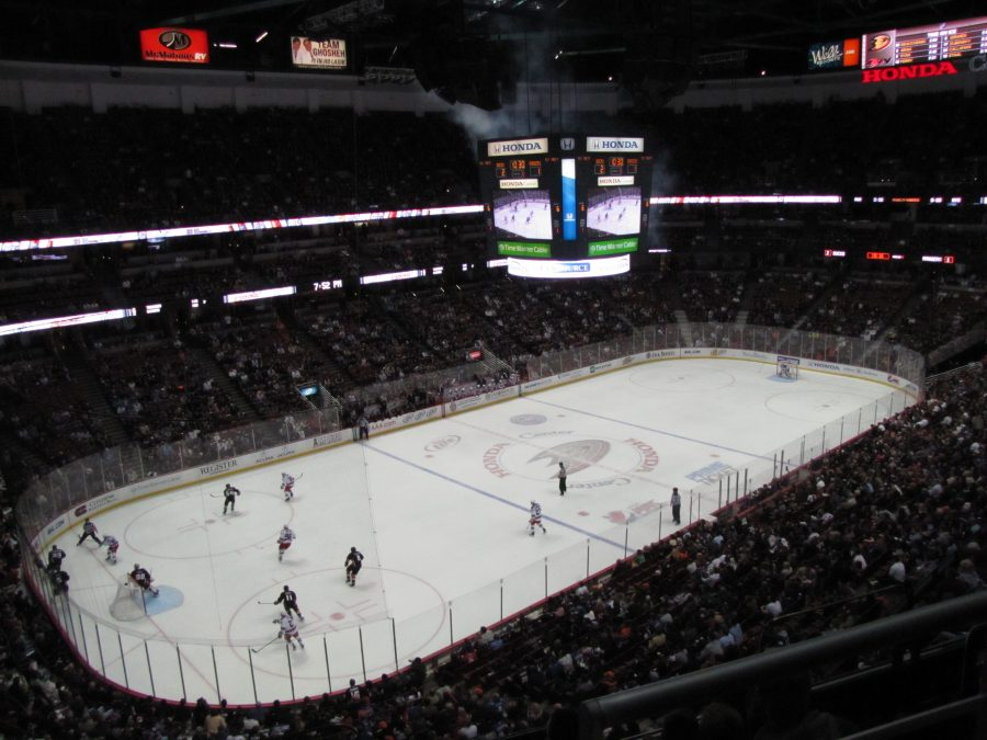 Honda Center Interior Anaheim Ducks