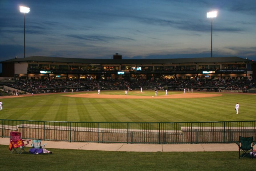 Dow Diamond - Great Lakes Loons