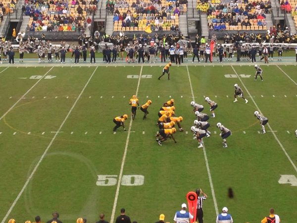 Fifth Third Bank Stadium, Kennesaw State Owls in action