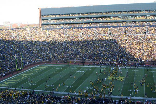 Stands At The Big House