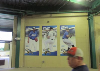 Constellation Field, Posters in Concourse