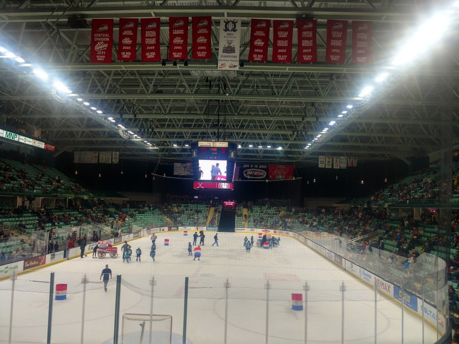 Overall View of Arena