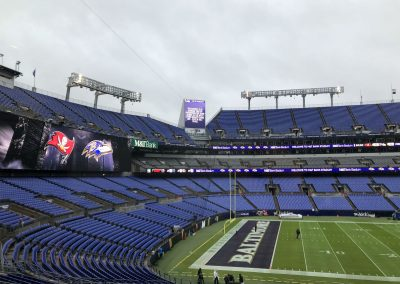 Pre-Game View