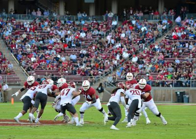Stanford Stadium, Cardinal Fans Watch the Action