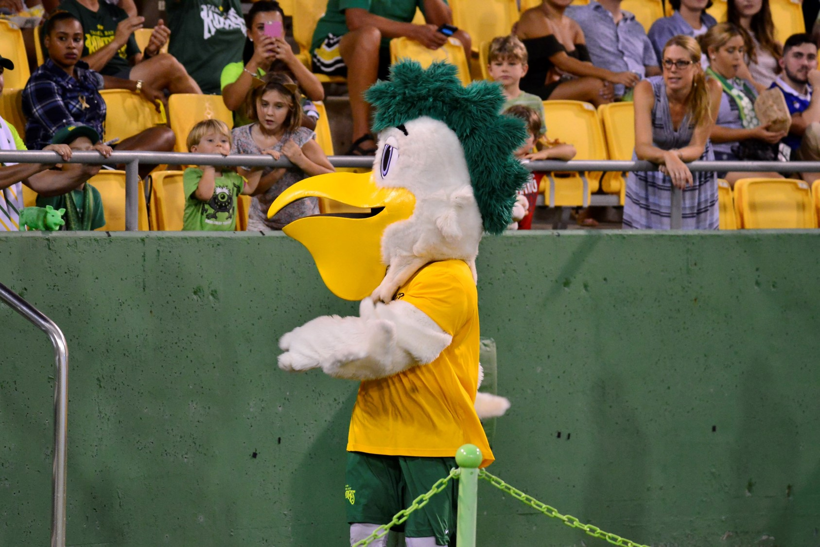 The Best Tampa Bay Rowdies
