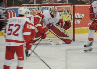 Greyhound Goalie Looks for the Puck
