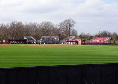 Bainton Field Interior