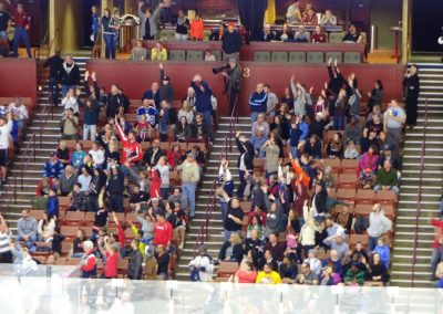 Bon Secours Wellness Arena, Greenville Swamp Rabbits Fans Looking On