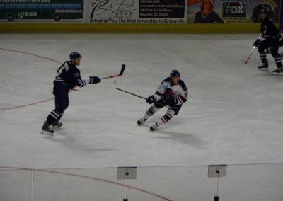 Bon Secours Wellness Arena, Greenville Swamp Rabbits in Action