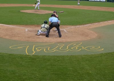 Plumeri Park, William & Mary Tribe Logo Behind Home Plate