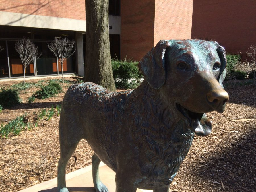 Chesapeake Bay Retriever Statue