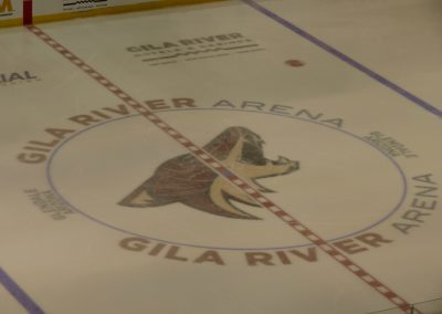 Coyote Logo at Center Ice