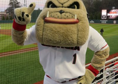 Hairy Dawg Suits Up