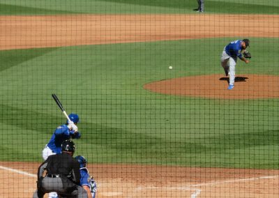 View Behind the Plate
