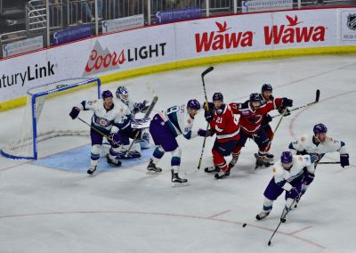 Amway Center, Orlando Solar Bears in Action