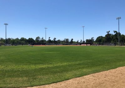 MacGregor Park, View from the Outfield