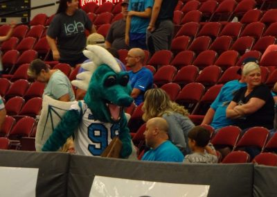 Civic Center of Anderson, Upstate Dragons Mascot Interacts with Fans