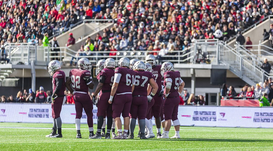 Ottawa Gee-Gees Video Review