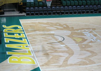 Inlay Of Dragon Mascot On Court