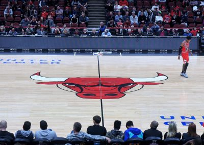 United Center Bull Logo