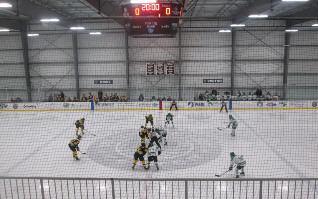 Canadian Women's Hockey League to Cease Operations