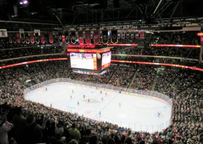 Overview of Rink and Crowd